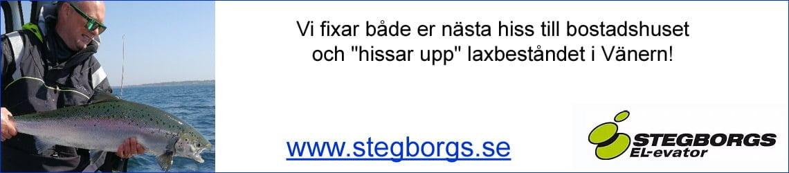 Stegbergs EL-evator