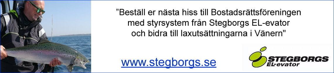 Stegborgs EL-evator